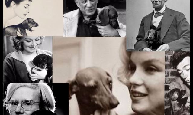 Famous owners of Dachshunds, including Abraham Lincoln, Marilyn Monroe and Andy Warhol